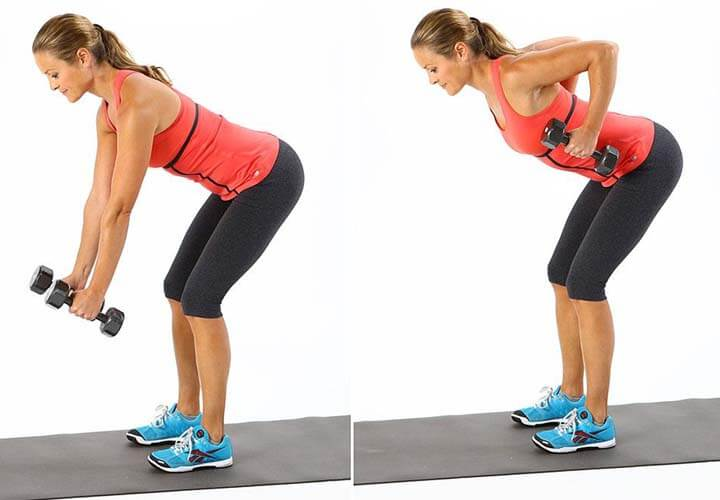 Bent Over Pulses Exercise